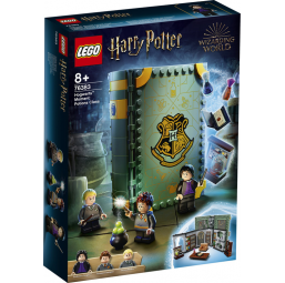 LEGO Harry Potter - Poudlard : le cours de potions - Lego -Jeux de construction