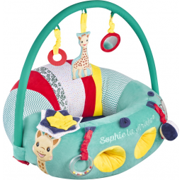 Baby seat and play V2 -  -Tapis, aires d'éveil, veilleuses